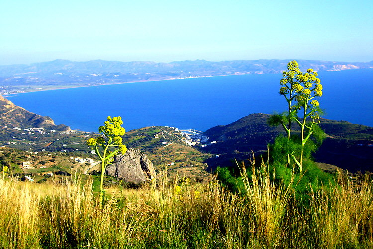 Agia Galini: View of the village and the Messara Bay from above Harakas